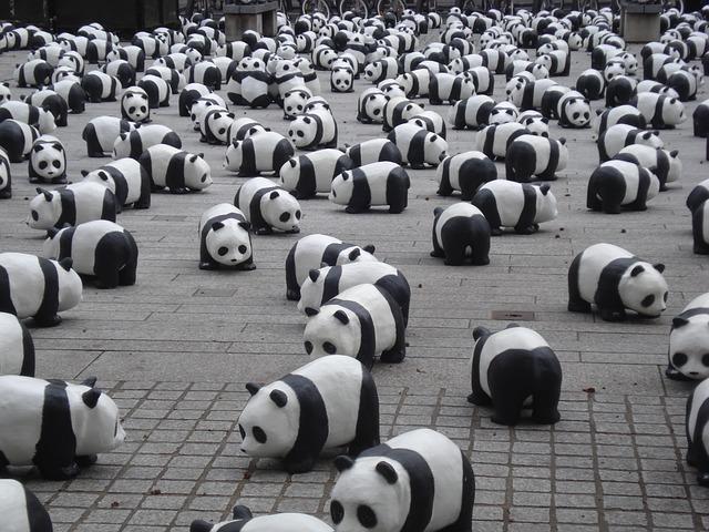 actualización algoritmo Google Panda