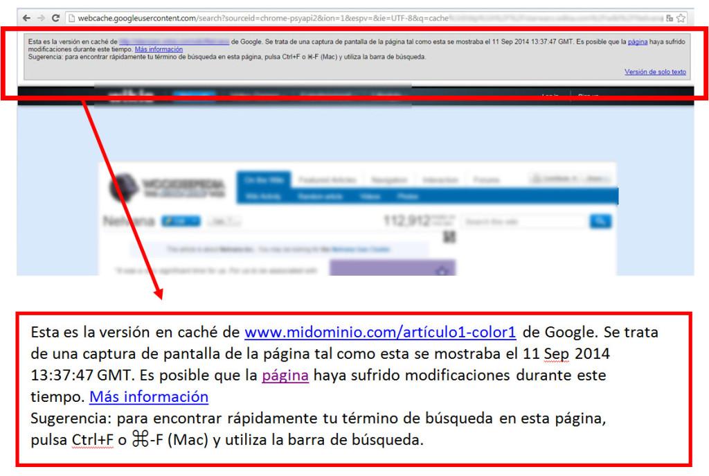 Usar la caché de Google para comprobar el funcionamiento de las etiquetas rel canonical