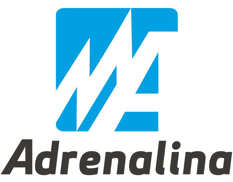 Posicionamiento web Barcelona | Adrenalina