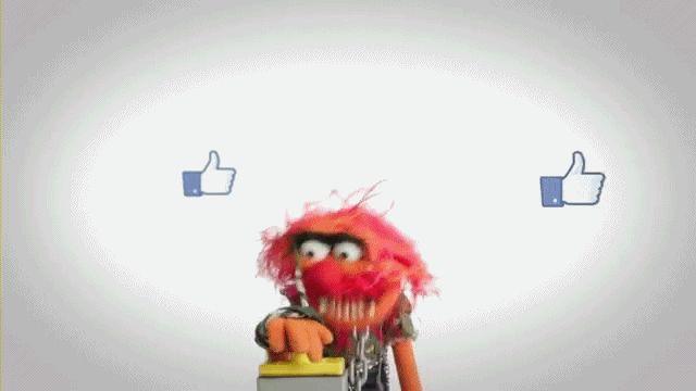 social media blog esta perdiendo trafico