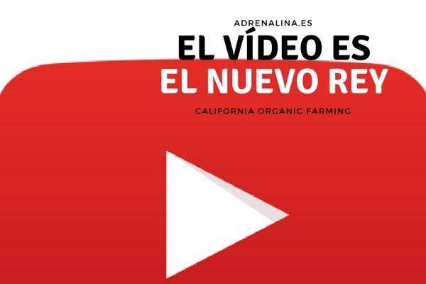 vídeo rey del contenido