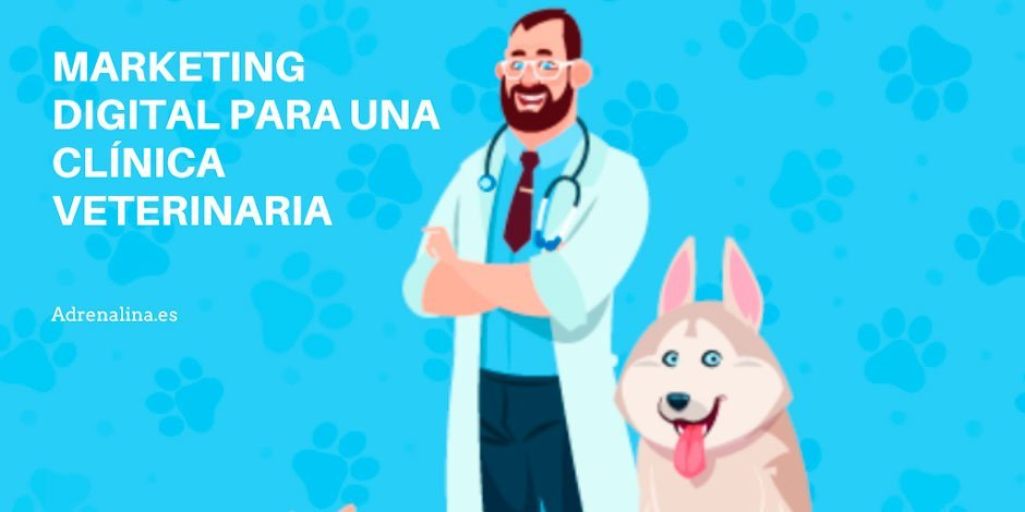marketing digital clinica veterinaria