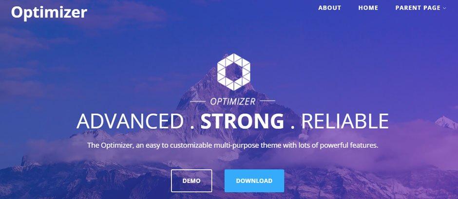 optimazer demo wordpress